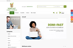 Conception site internet domi-fast.com